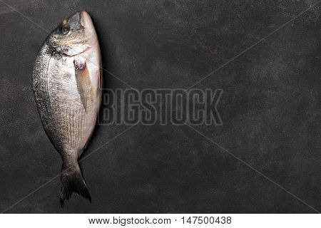 Fresh dorado fish on the chalkboard. Copy space, top view