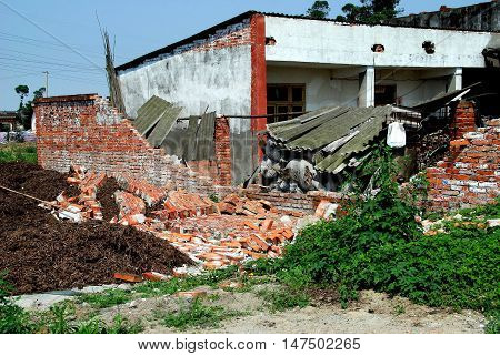 Pengzhou China - May 15 2008: Farmhouse with collapsed brick wall caused by the 12 May 2008 8.2 Sichuan province earthquake