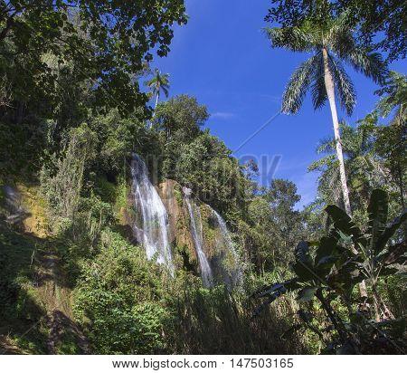 Waterfall in a lush rainforest. Vegas grande waterfall in Topes de Collante Trinidad Cuba poster