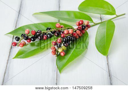 Thai Blueberry Fruit