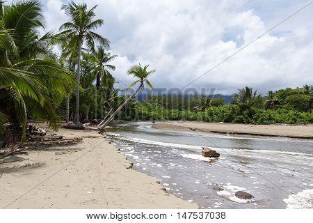 Costa Rican South Pacific Beach