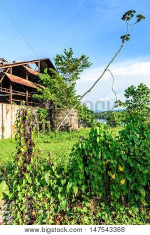 River glimpse behind old building & greenery Rio Dulce, Livingston, Guatemala