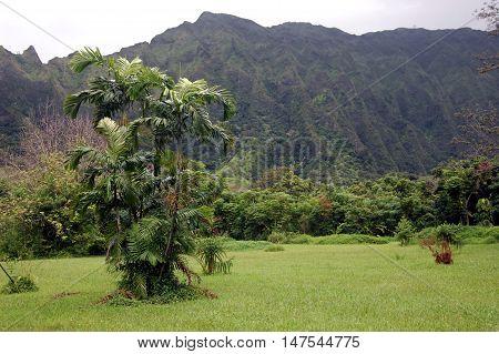 View of the volcano ridges, Oahu, Hawaii