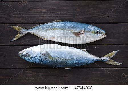 Fresh Fish on wooden background. Yellowtail Amberjack. Stuffed with apples lemon and fresh herbs
