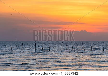 Seacoast skyline with beautiful sky background, natural landscape background
