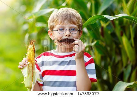 Happy preschool kid boy with glasses holding ears of corn on farm in field, outdoors. Child having fun and making moustache with vegetable. Harvest, Thanksgiving Day.