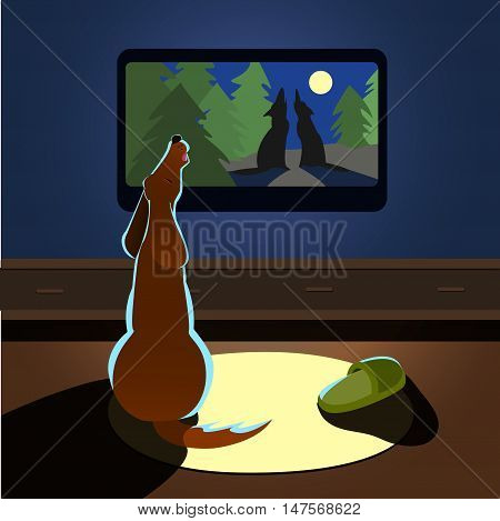 Brown dog howling watches TV Vector illustration back view