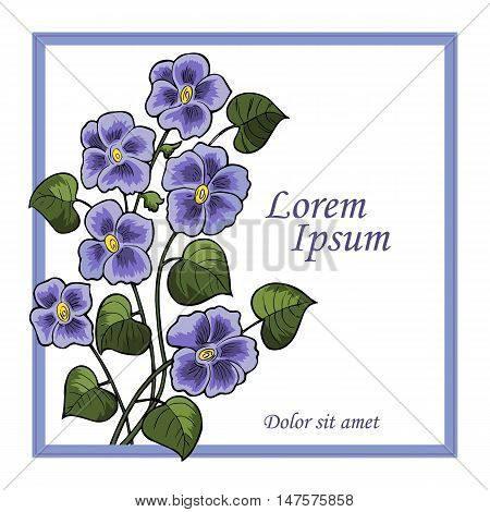 Summer Vintage Floral Greeting Card with pansies and garden flowers, Thank you botanical natural hydrangea Illustration on white in watercolor style. - stock vector.