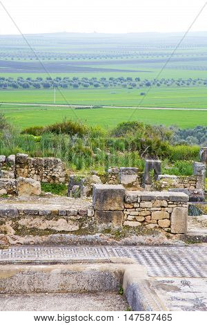 Volubilis   Monument And Site