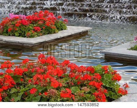 Garden design flowerbed and landscaped for background