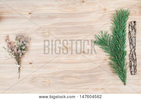 Minimal flower composition of the plants at wooden desk