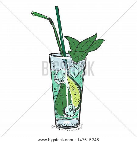 Vector Color Sketch Cocktail Mojito