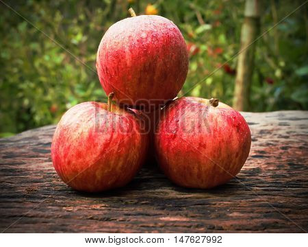 Ripe red apples on wooden background for food.