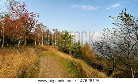 Autumn forest path. Mountains of northern Bohemia