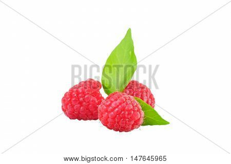 Red berry on a white background with clipping path