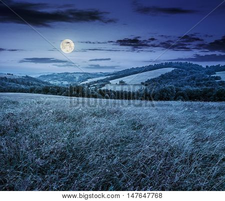 Rural Field Near Forest At Hillside At Night