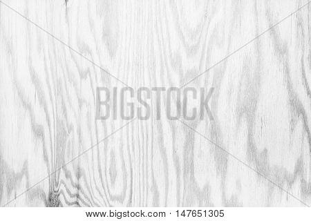 White plywood texture background. White plywood texture background