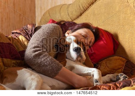 Dog Sleeps On The Bed With The Mistress