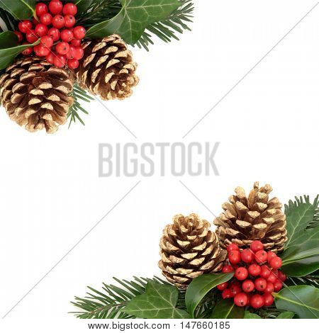 Christmas background border with holly, gold pine cones, ivy and fir over white background.
