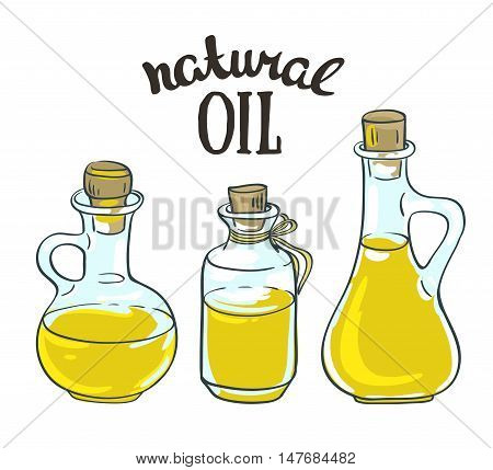 Set of bottles with sunflower linseed and olive oil. Vector isolated objects.