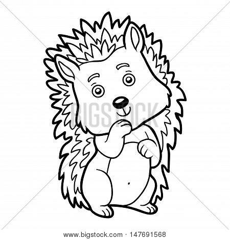 Coloring book for children, colorless animal, Hedgehog