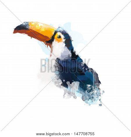 Watercolor bird, illustration Toucan, tropical bird watercolor
