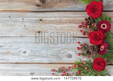 horizontal image of a group of bold red  roses and cranberries placed on one side of the image on an old rustic wood plank background great idea for a greeting card.