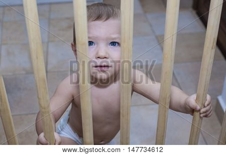 One year old baby boy behind the wooden safety gate of stairs. He is trying to go upstairs