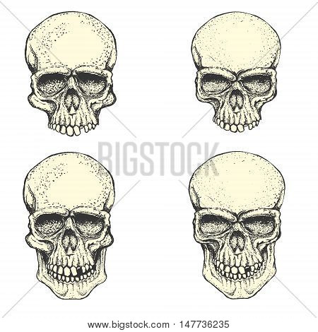 Set of hand drawn human skulls. Design elements for emblem poster t-shirt or apparel print. Vector illustration.