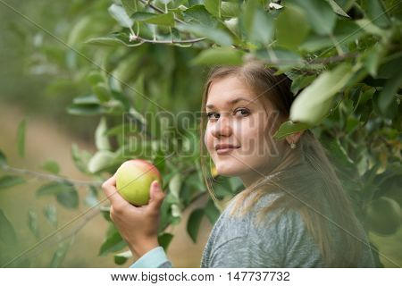 young girl holding green apple between apple trees