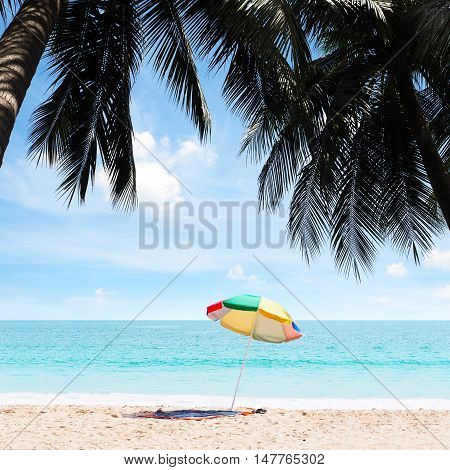 Summer beach coconut palm trees with blue sky and turquoise sea.