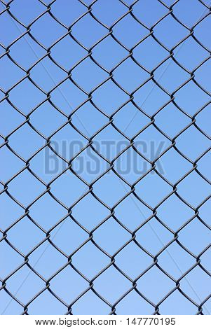 iron net fence against blue sky, vertical composition