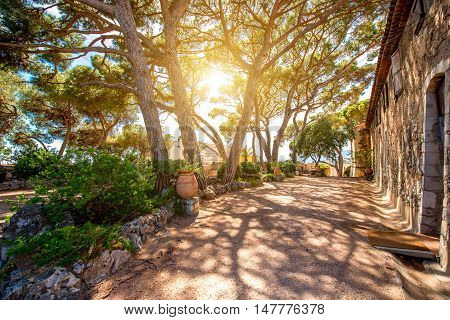 Beautiful park near Castre museum in Cannes city in France