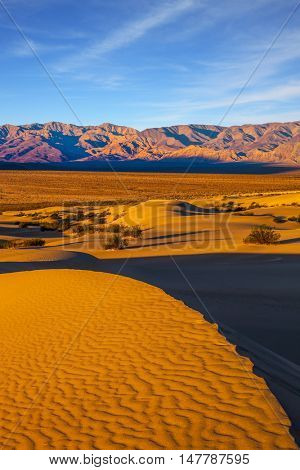 Small sandy ripples on orange barkhans. Mesquite Flat Sand Dunes in California