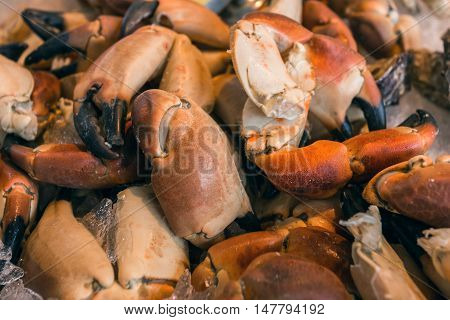 Crab Claws On Fish Market In Bergen, Norway