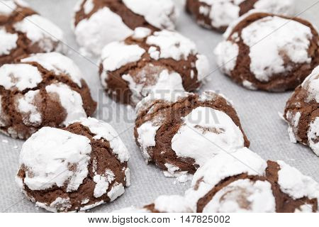 Making Chocolate Cookies