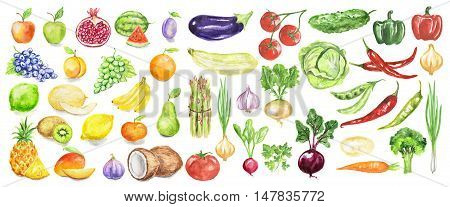 Watercolor fruit and vegetables set on white background including apples, coconut, lime, tomatoes, cucumber and more. Vegetarian diet food with vitamins.