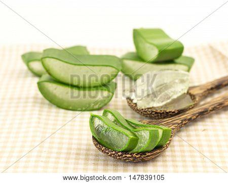 Fresh Slice Aloe Vera  On White