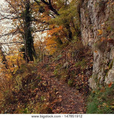 Narrow trail between trees rocks and abyss. Autumn landscape in warm colors.