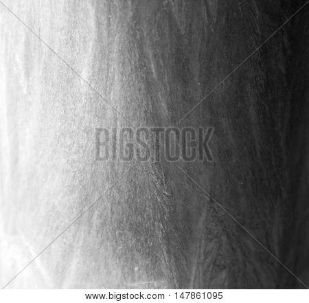 Palm wax grey texture light and dark shadow background