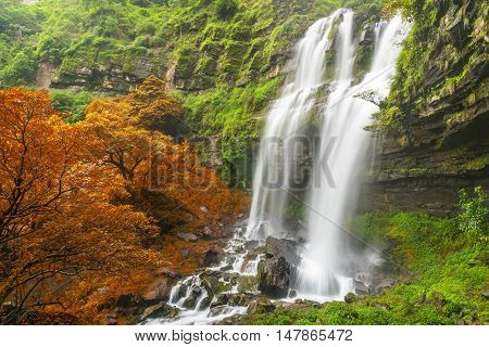 Tad TaKet waterfall A big waterfall in deep forest at Bolaven plateau on autumn Ban Nung Lung Pakse Laos.