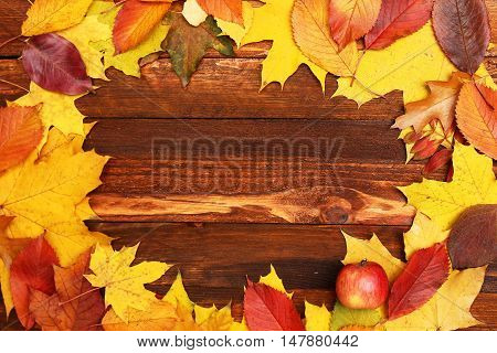 Autumn frame with leaves on the wooden background