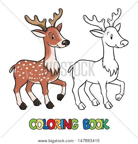 Coloring book or coloring picture of young deer or fawn. Children vector illustration