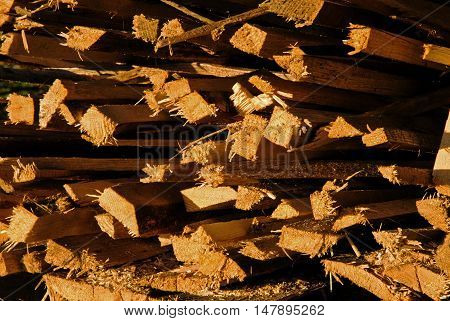 Pile of wooden pine stakes with visible splinters and losses in morning warm light closehorizontal view.