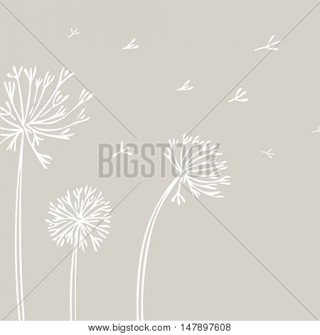 Abstract Dandelion Background with white flowers on beige background. Vector Illustration can be used for vinyl wall decal, posters, t-shirts, bags.