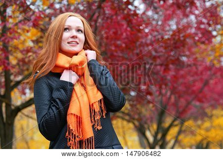 girl portrait in autumn season, look up, background from red and yellow leaves