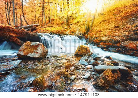 Waterfall on the river in forest in autumn