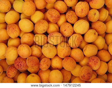 Background Of Fresh Ripe Apricots Close Up