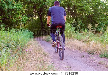 Mountainbiker riding on bicycle in summer park at sunny day