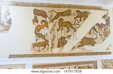 TUNIS TUNISIA - SEPTEMBER 2 2015: The jaguars and gazelles on mosaic of Bardo National Museum on September 2 in Tunis.
